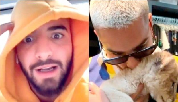 MALUMA-INSTAGRAM-MALTRATO-ANIMAL