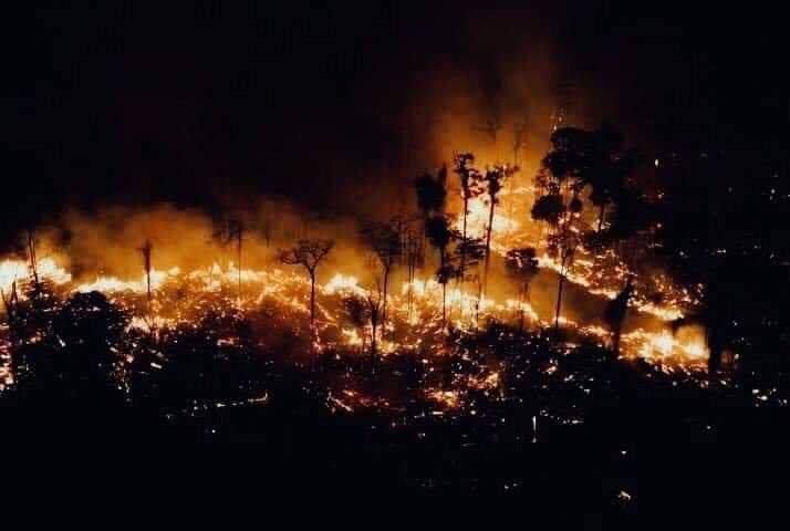 incendio amazonas 2