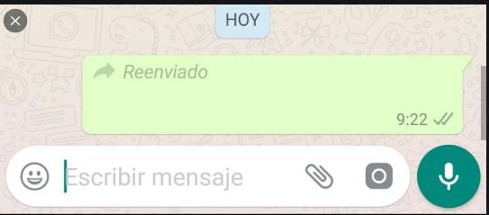 Whatsapp: cómo saber cuántas veces reenviaron tu mensaje