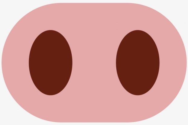 Emoji nariz de cerdo
