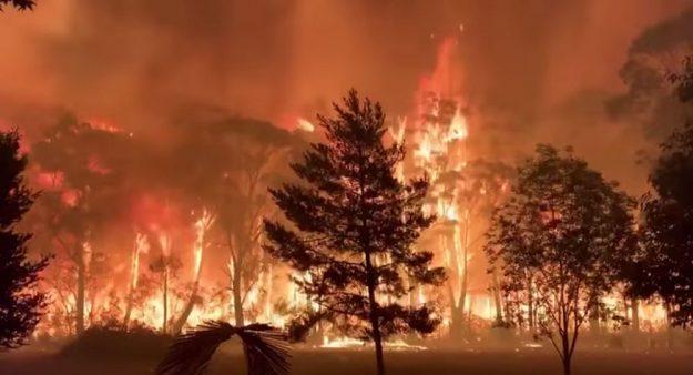 argentina humo incendios australia