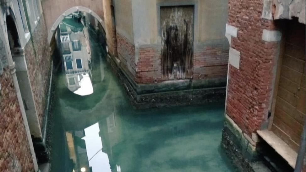 Venecia luce sus canales ahora limpios y transparentes por la ...