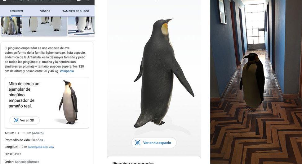 Pingüino 3D Google